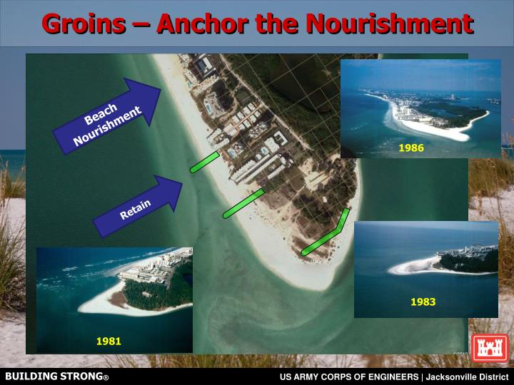 Groins – Anchor the Nourishment