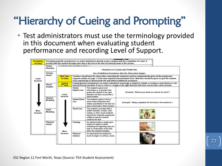 """Hierarchy of Cueing and Prompting"""