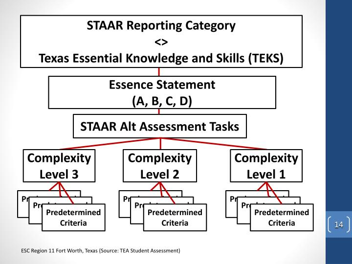 STAAR Reporting Category