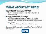 what about my ripae