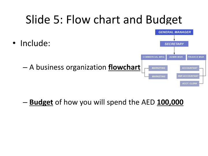 Slide 5: Flow chart and Budget