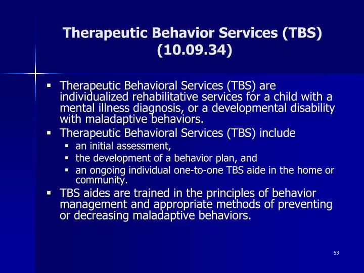 Therapeutic Behavior Services (TBS)