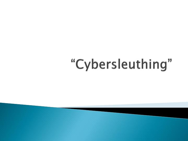 Cybersleuthing