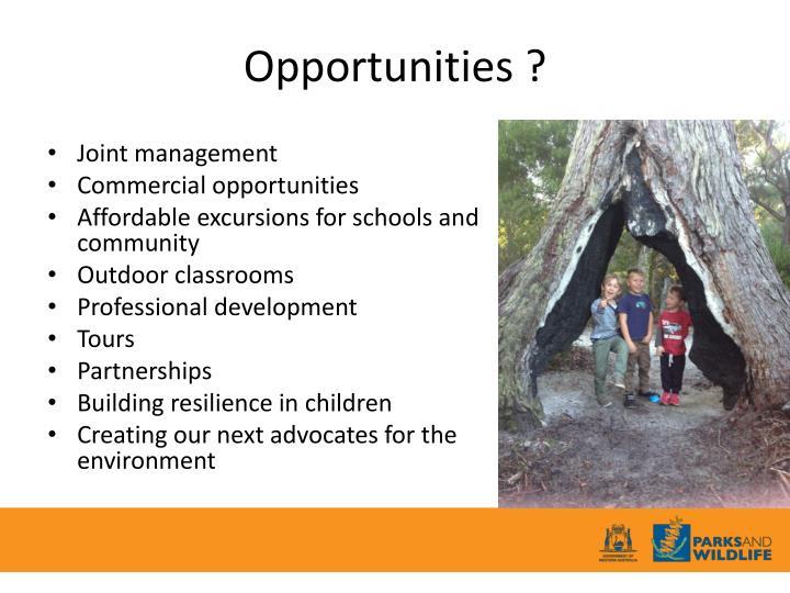 Opportunities ?