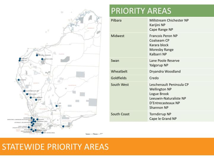 STATEWIDE PRIORITY AREAS