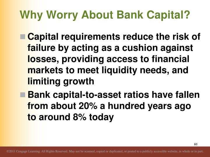 Why Worry About Bank Capital?