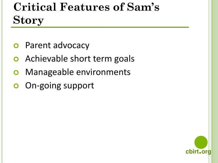 Critical Features of Sam's Story