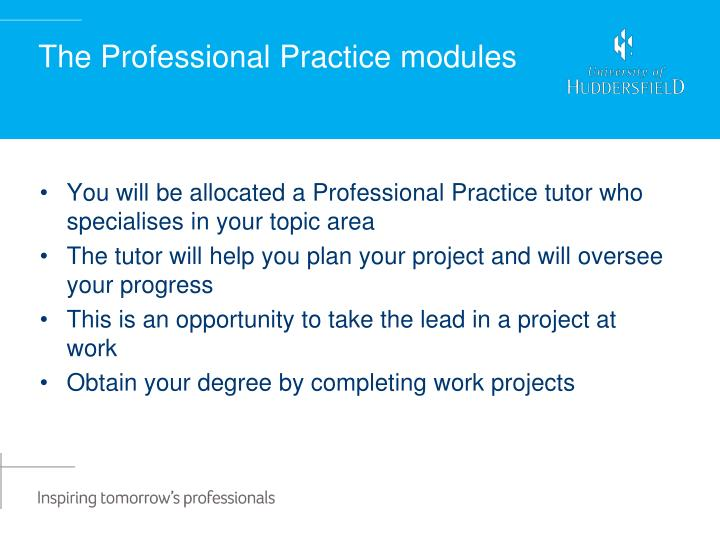 The Professional Practice modules