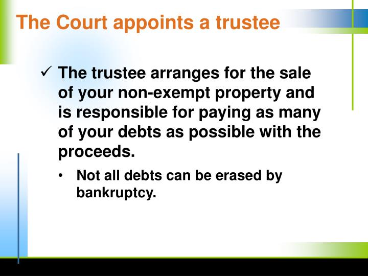 The Court appoints a trustee