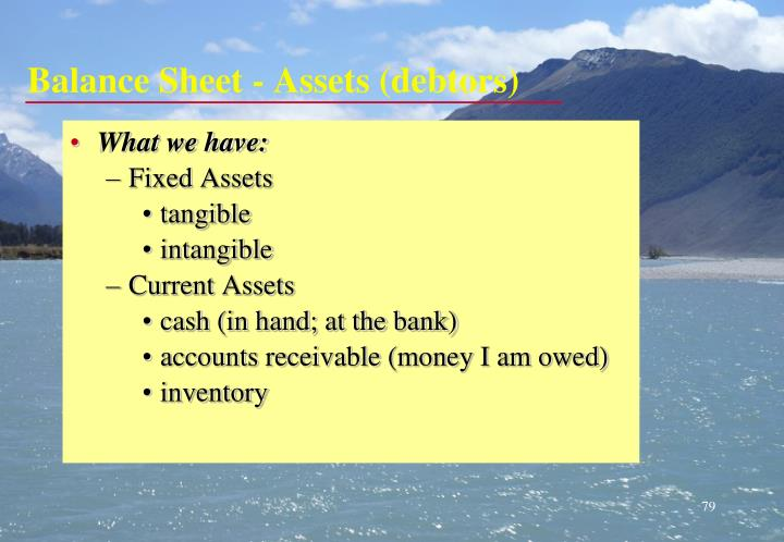 Balance Sheet - Assets (debtors)