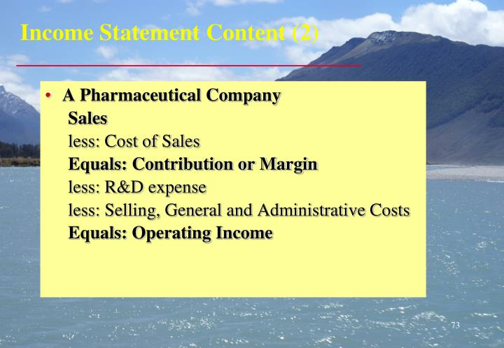 Income Statement Content (2)
