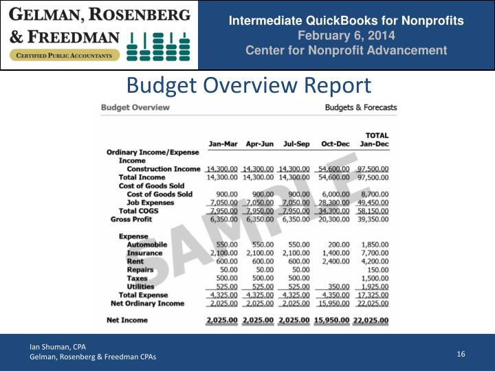 Budget Overview Report