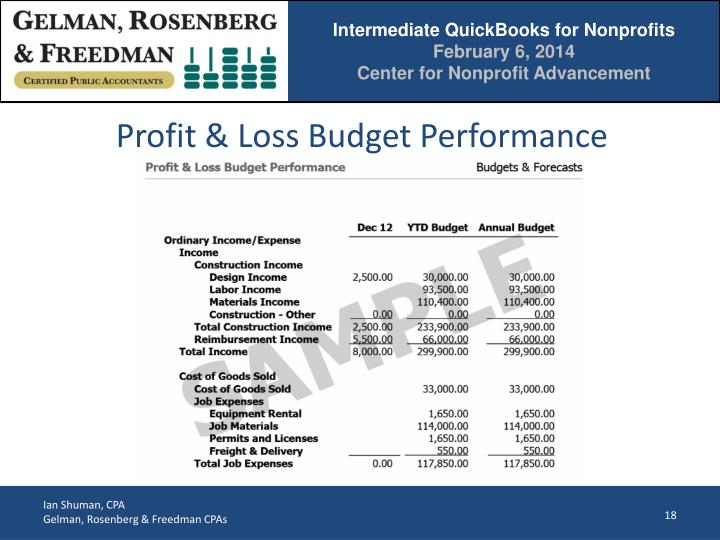Profit & Loss Budget Performance