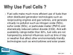 why use fuel cells