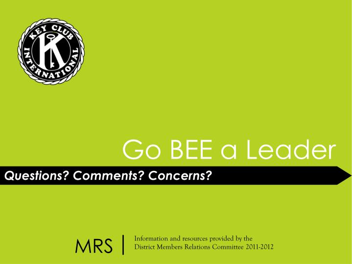 Go BEE a Leader