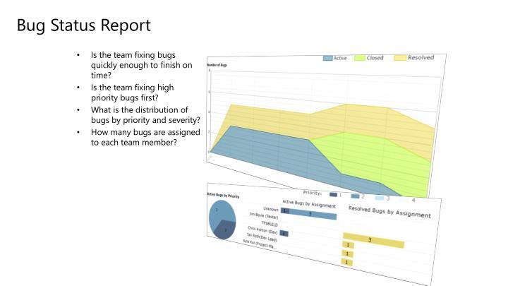 Bug Status Report
