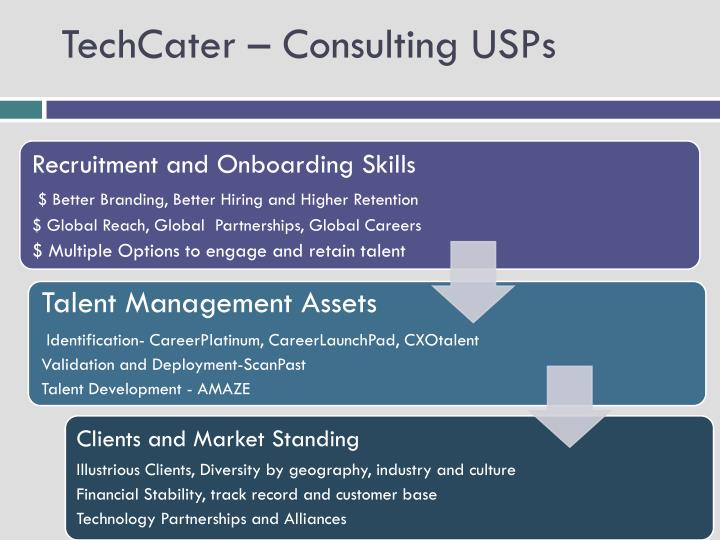 TechCater – Consulting USPs