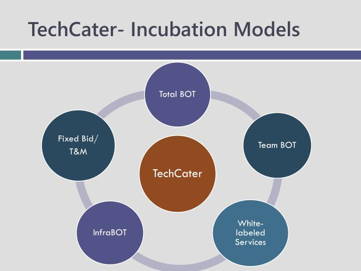 TechCater- Incubation Models