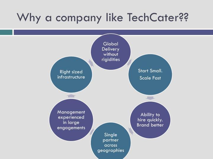 Why a company like TechCater??
