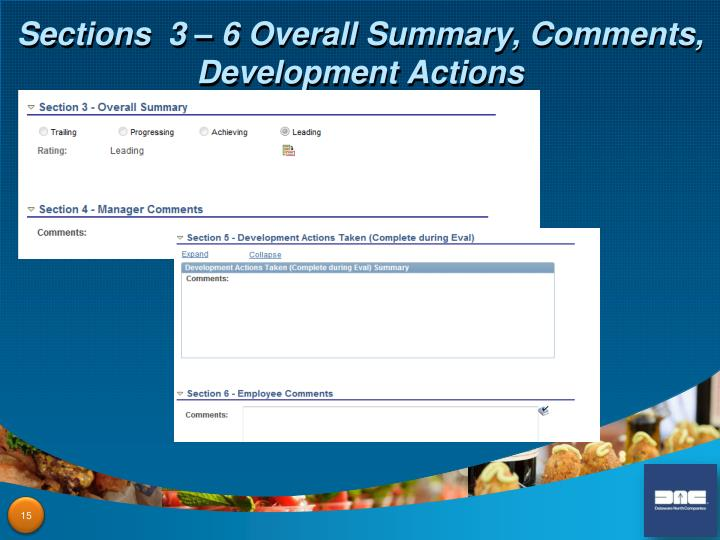 Sections  3 – 6 Overall Summary, Comments, Development Actions