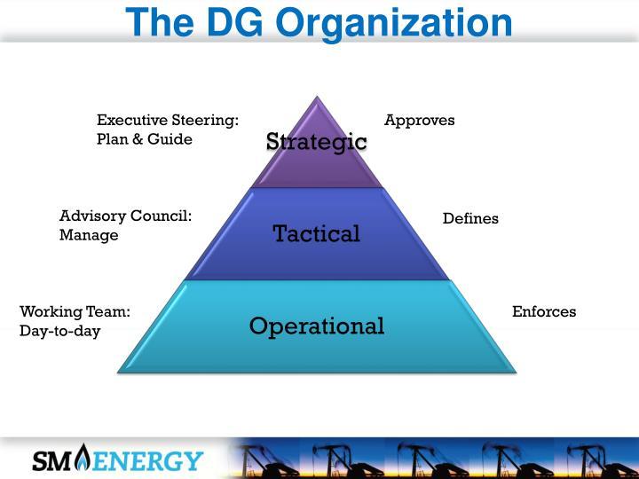 The DG Organization