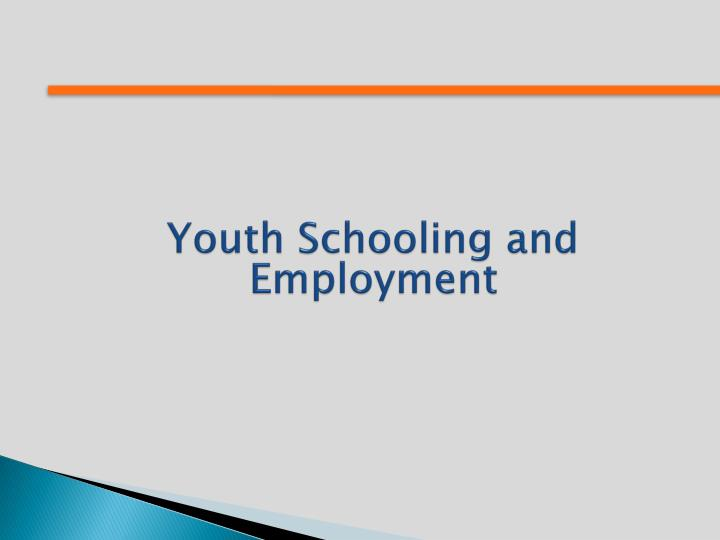 Youth Schooling and Employment