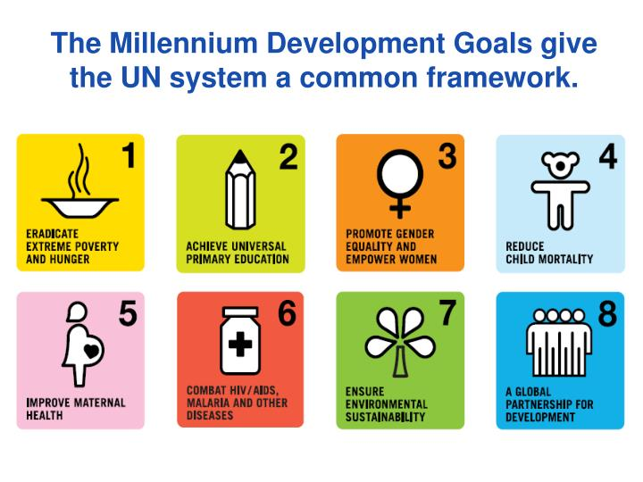 The Millennium Development Goals give the UN system a common framework.