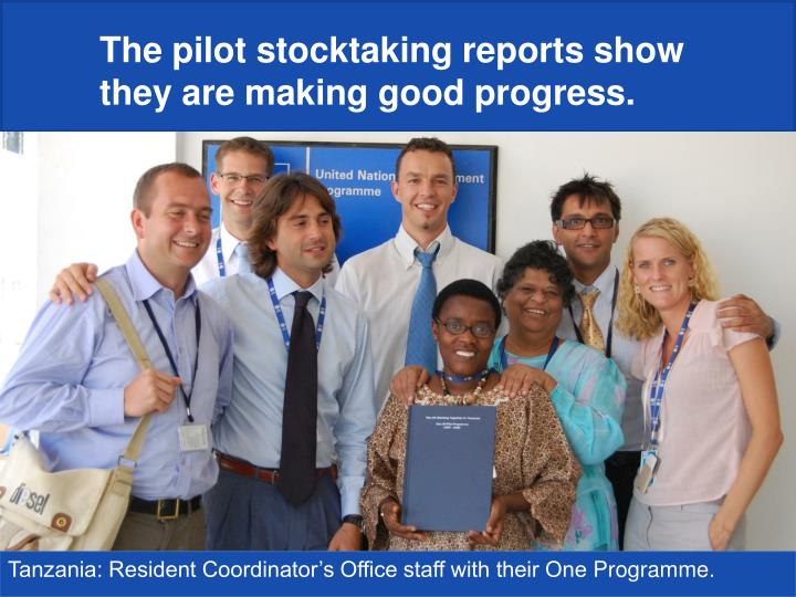 The pilot stocktaking reports show