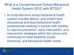 what is a comprehensive school behavioral health system soc with mtss