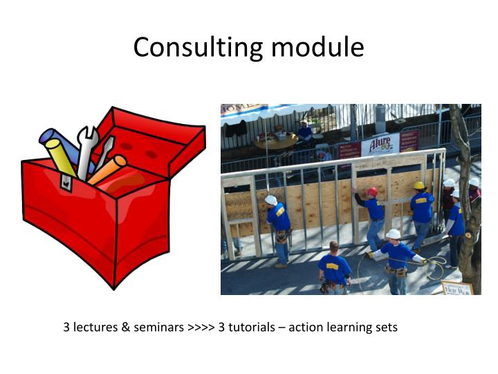 Consulting module
