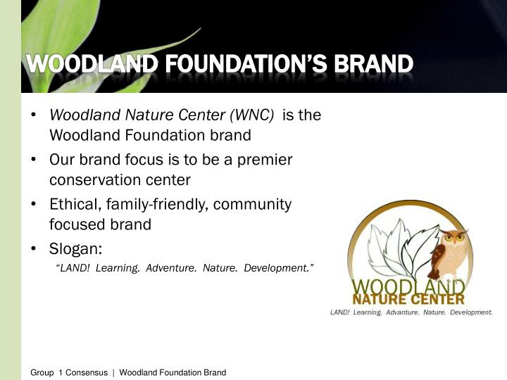 Woodland foundation s brand