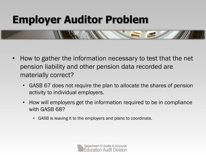 Employer Auditor Problem