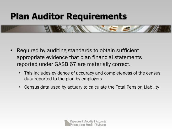 Plan Auditor Requirements