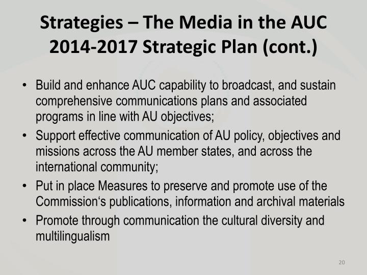 Strategies – The Media in the AUC 2014-2017 Strategic