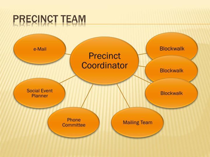 Precinct Team