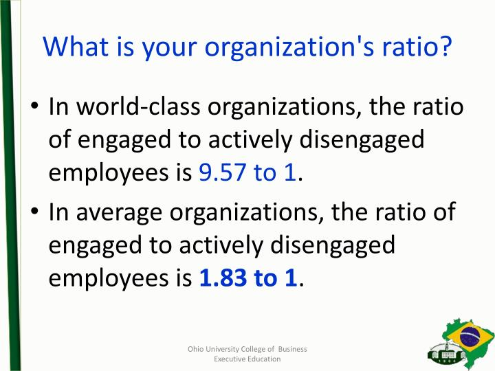 What is your organization's ratio?