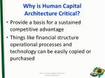 why is human capital architecture critical