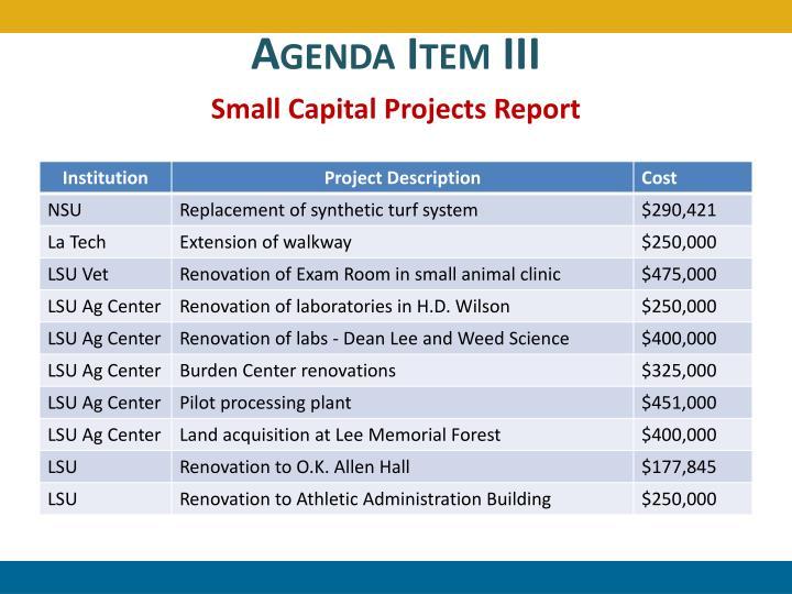 Agenda Item III