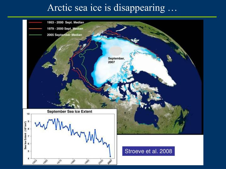 Arctic sea ice is disappearing …