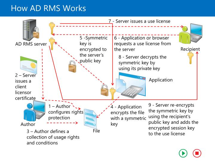 How AD RMS Works