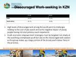 discouraged work seeking in kzn