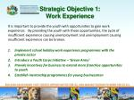 strategic objective 1 work experience