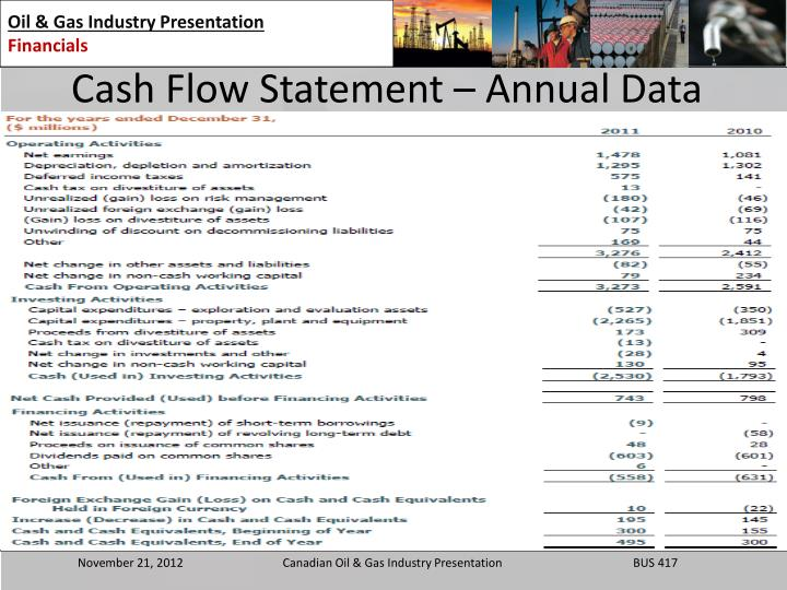 Cash Flow Statement – Annual Data