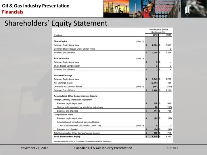 Shareholders' Equity Statement