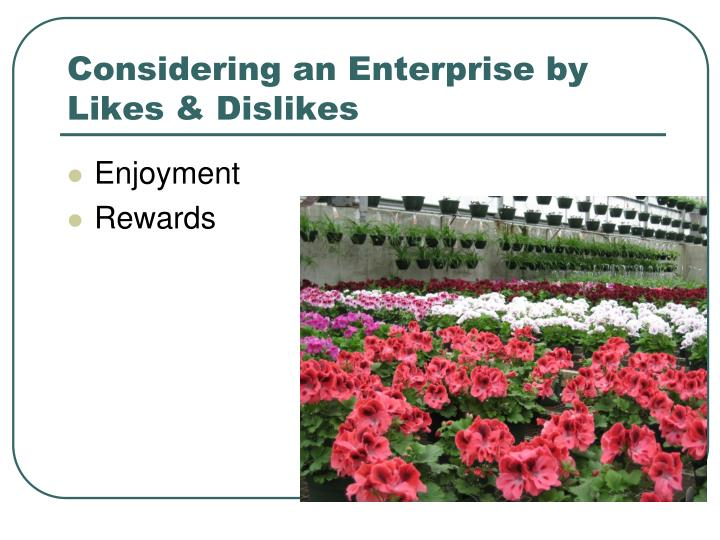 Considering an Enterprise by Likes & Dislikes