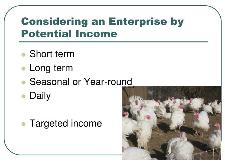 Considering an Enterprise by Potential Income