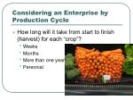 considering an enterprise by production cycle