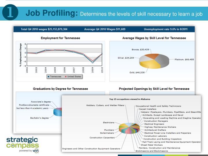 Job Profiling: