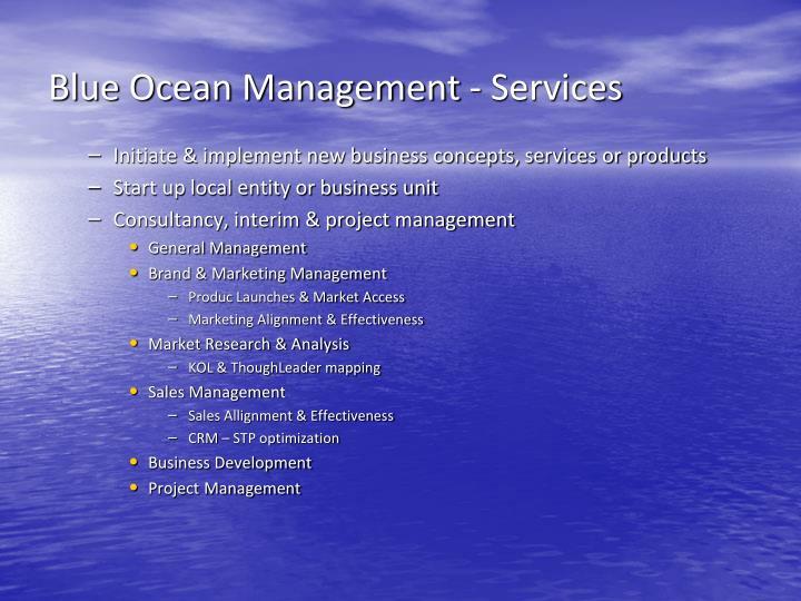 Blue Ocean Management - Services