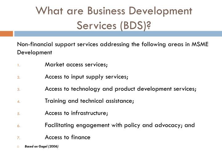 What are Business Development Services (BDS)?